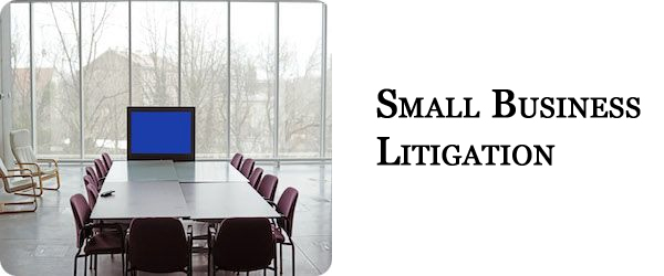 Small Business Litigation